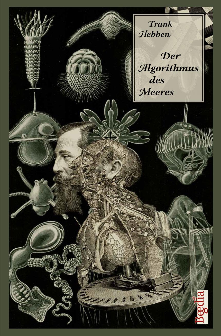 algorithmus_cover